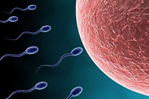 Изобретены уникальные способы лечения бесплодия у мужчин и новые виды контрацепции