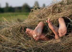 Ноги в сене