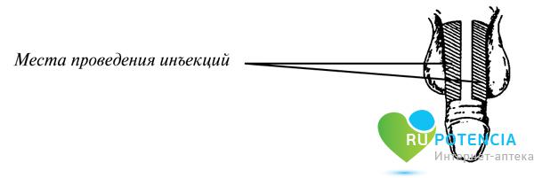 Каверджект инструкция